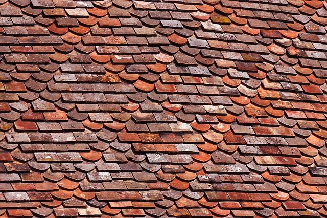 How To Get Rid Of Mold On Roof Shingles Roof Cleaning: Removing Mold and Mildew | Smarter Cleaning ...